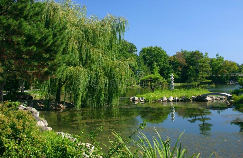 lakeside arkivfoton