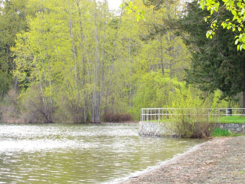lakeside obrazy stock