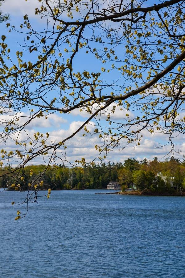 Lakeside aanzicht royalty-vrije stock afbeelding