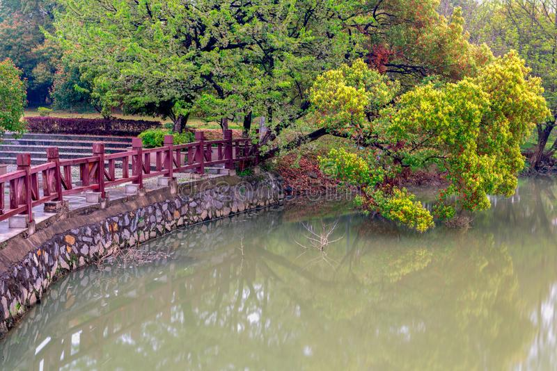 Lakeside arbre-Nan-Tchang Mei Lake Scenic Area photographie stock