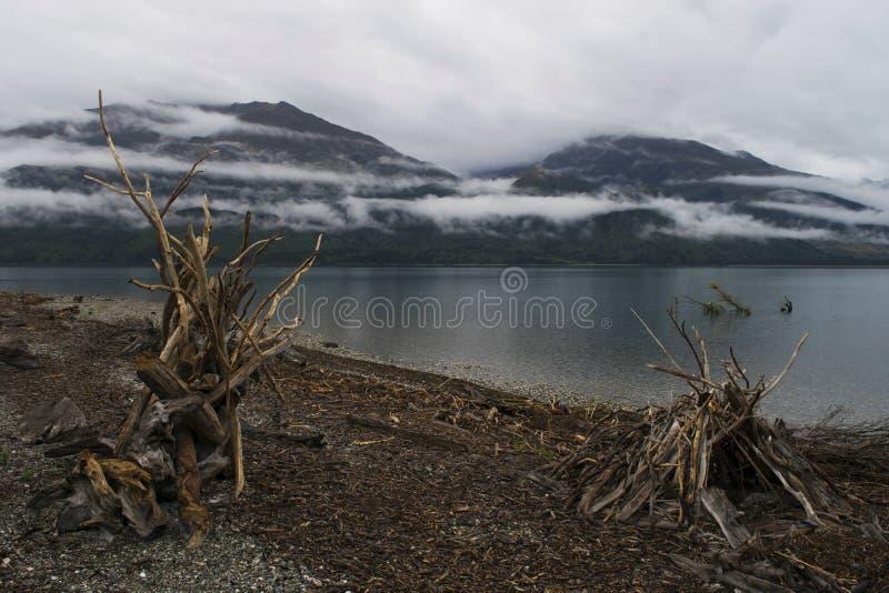 Lakeside på sjön Wanaka, Nya Zeeland royaltyfri foto