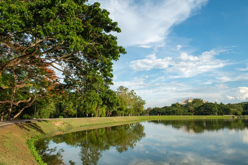 Lakeside scenery view. With beautiful greenery tree lined and sky, reflection view, landscape, background, blue, bright, calm, clean, day, edge, environment stock photos