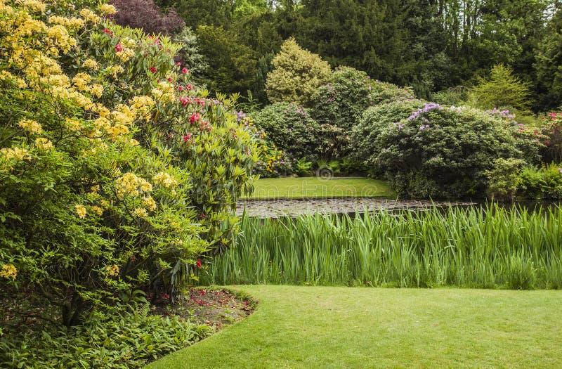 Lakeside walk at Biddulph Grange, Stoke, Engalnd royalty free stock image