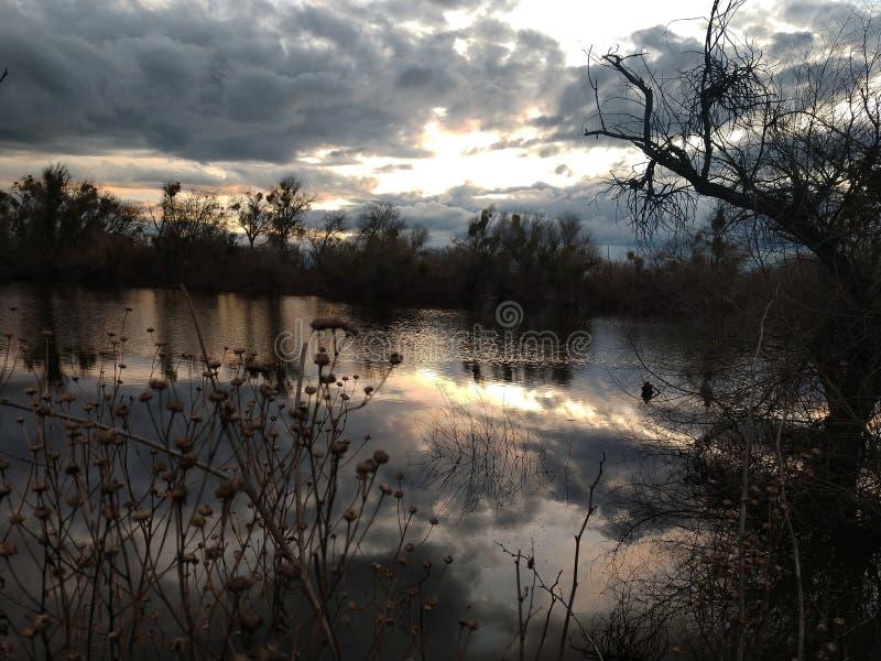 Lakeside stock foto's