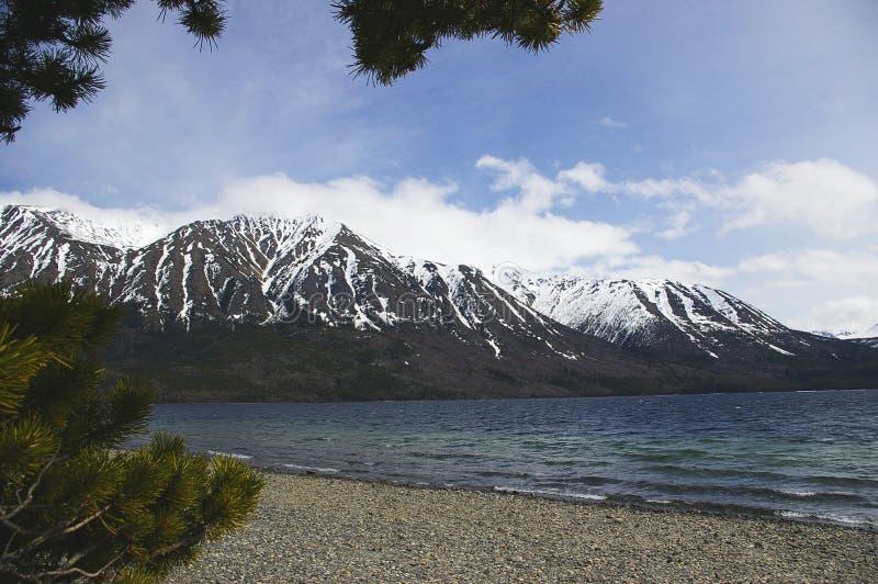 lakeside yukon royaltyfri bild