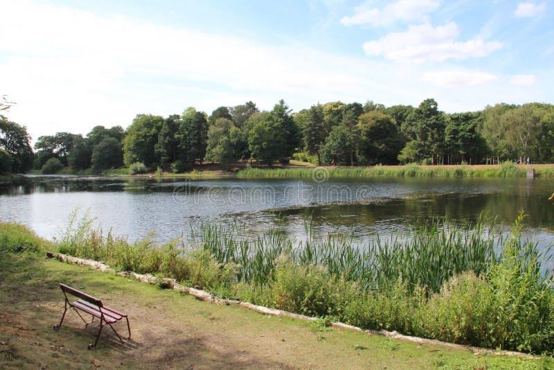 Lakesiden med bänken på det Nostell huset och trädgårdar near wakefield Yorkshire England UK arkivfoto