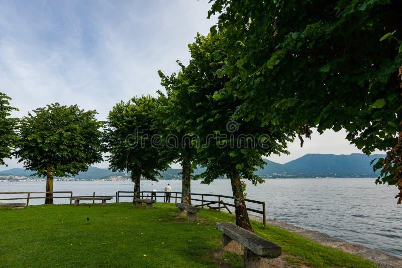 Lakesiden parkerar på våren royaltyfria bilder