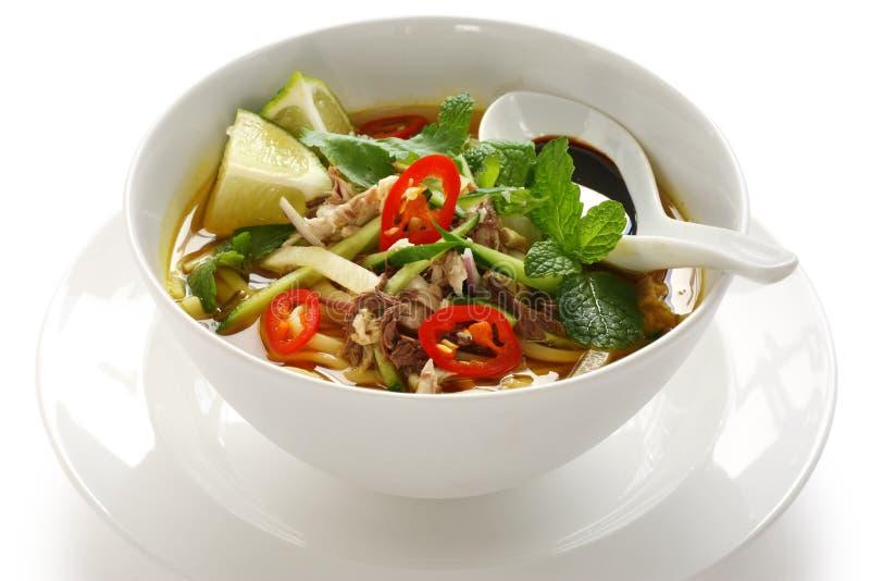 Laksa de Penang assam, alimento malaio fotografia de stock royalty free