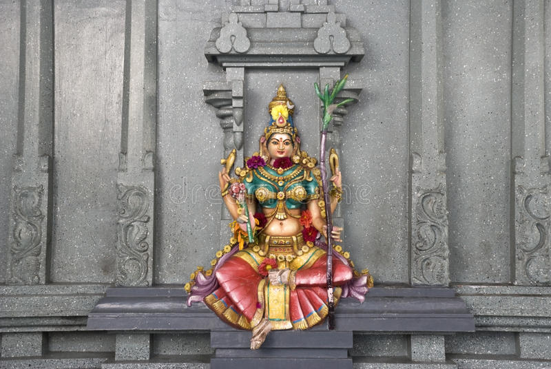 lakshmi стоковые фото