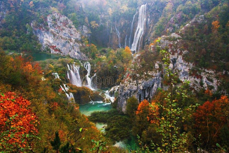 Lalake在有国家公园Plitvice, Croatiarain瀑布的森林里  免版税图库摄影