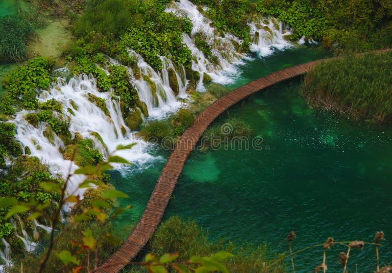 Lalake在有国家公园Plitvice, Croatiarain瀑布的森林里  库存图片