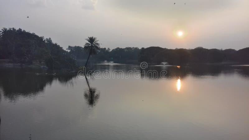 Lalbagh botanical garden, Bangalore. Sunset view at Lotus pond, Lalbagh botanical garden, Bangalore, Karnataka, India stock photography
