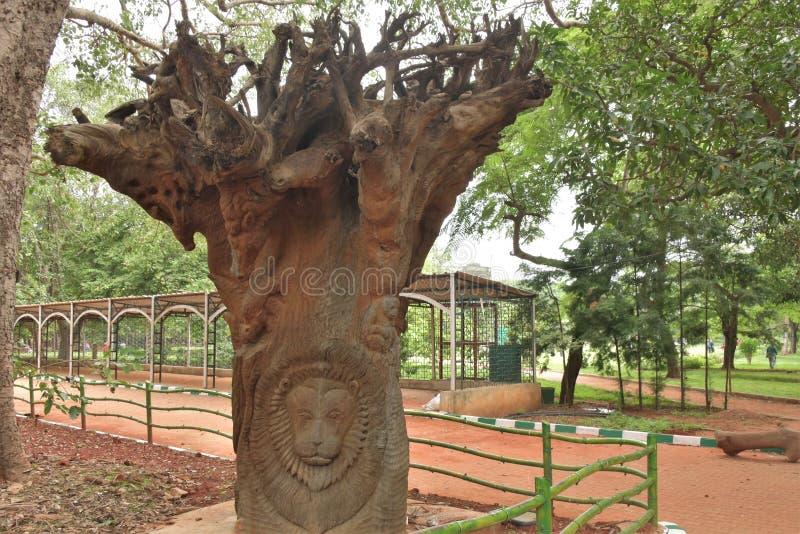 Lalbagh Botanical Gardens tree carvings, Bangalore. Karnataka, India stock photo