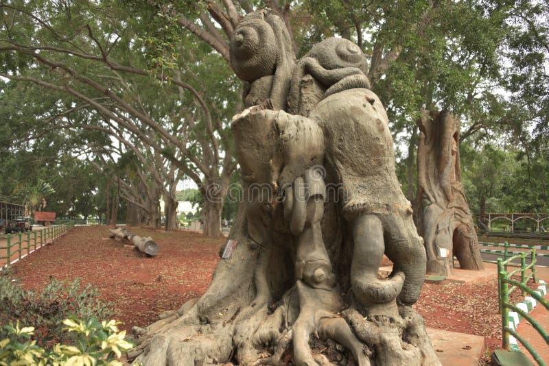 Lalbagh Botanical Gardens tree carvings, Bangalore. Karnataka, India stock images