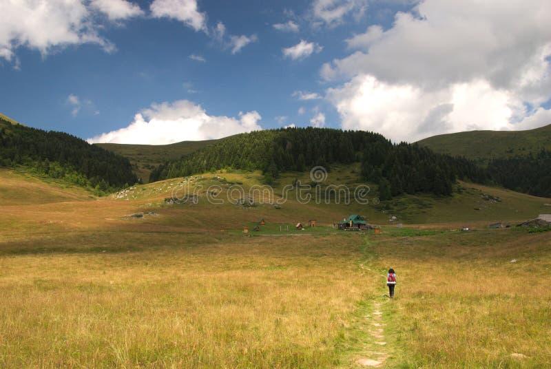 Lalevica dolovi na Bjelasica górze, Montenegro obrazy stock