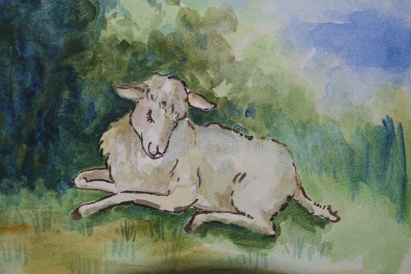 Lam royalty-vrije illustratie