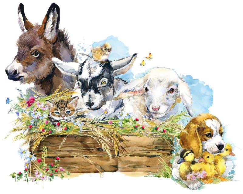 Lam Ezel Chiken Geit Puppyhond eendje de dierlijke inzameling van waterverflandbouwbedrijven royalty-vrije illustratie
