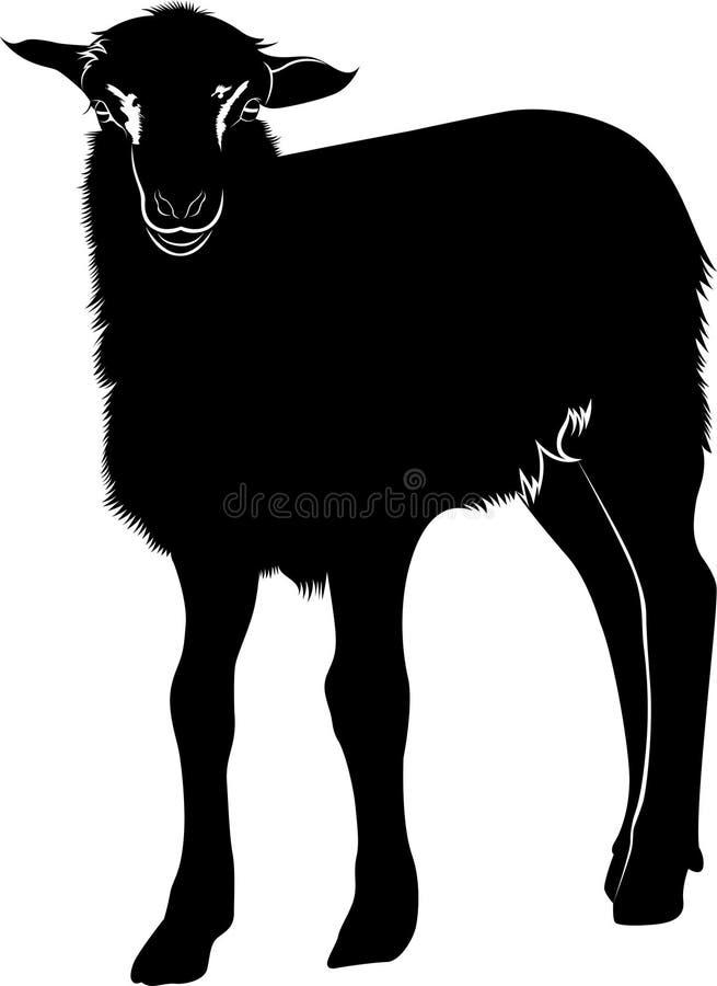 Lam Het lam van landbouwbedrijfdieren Dierlijk lam royalty-vrije illustratie