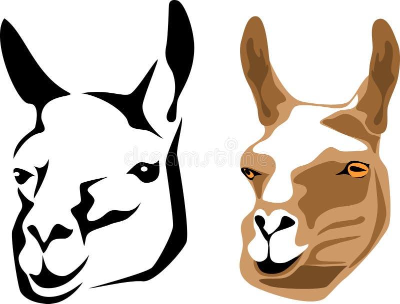 Lama ilustração stock