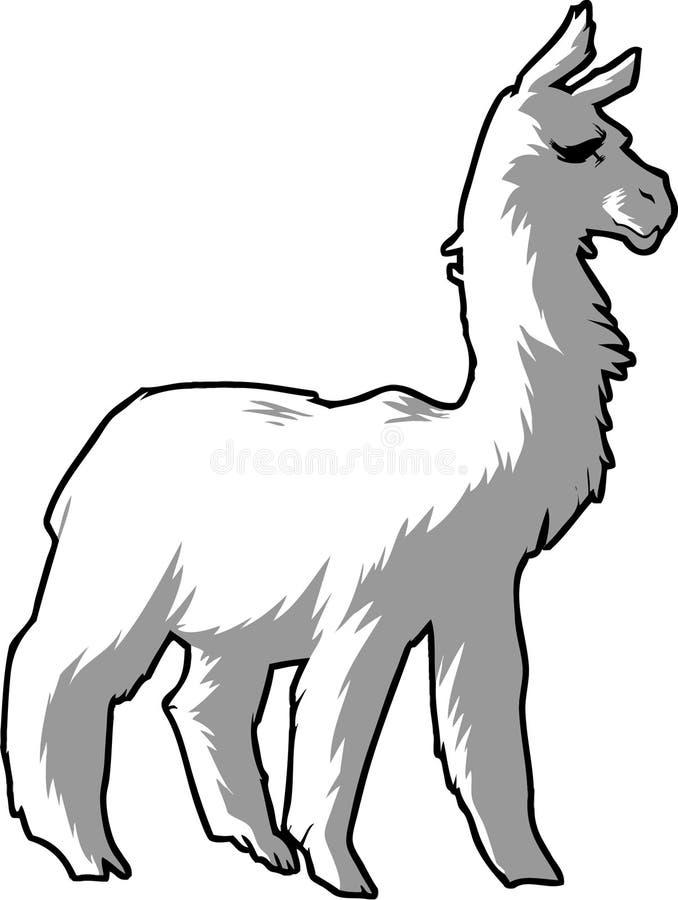 Lama alpaca royaltyfri illustrationer