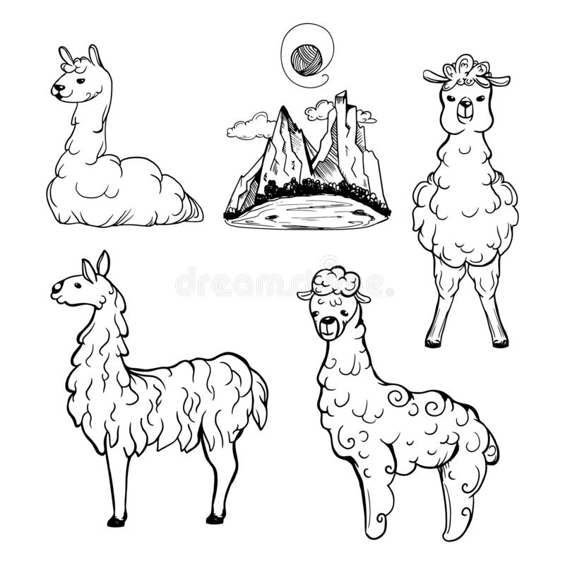 Lama and alpaca hand drawn set. Valley with mountains vector illustration. royalty free illustration