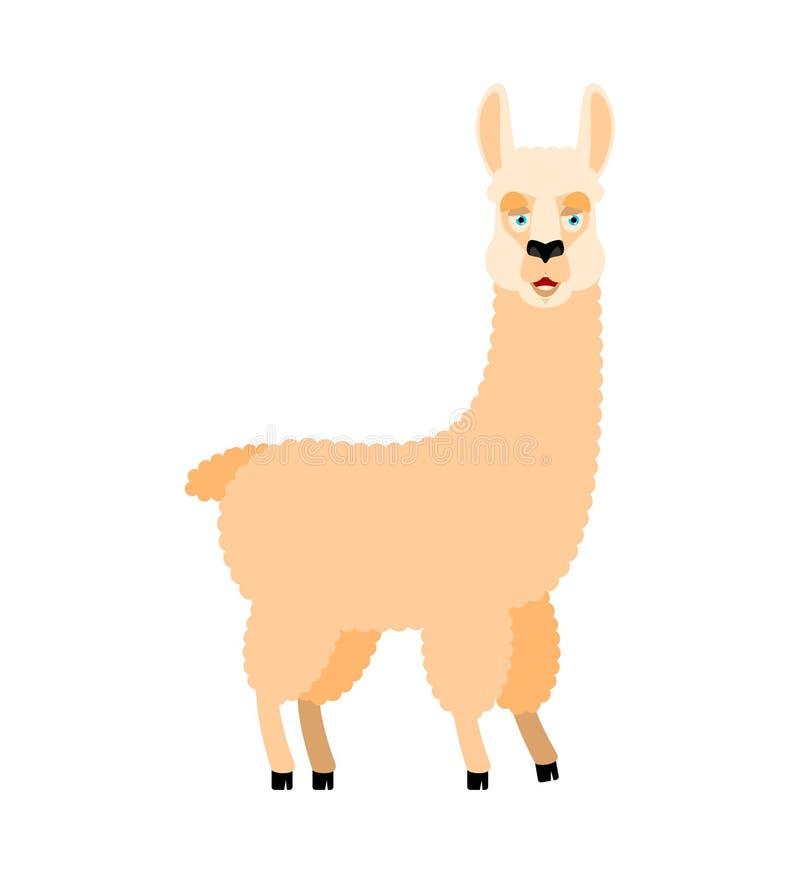 Lama Alpaca happy. Animal merryl emoji. Vector illustration stock illustration