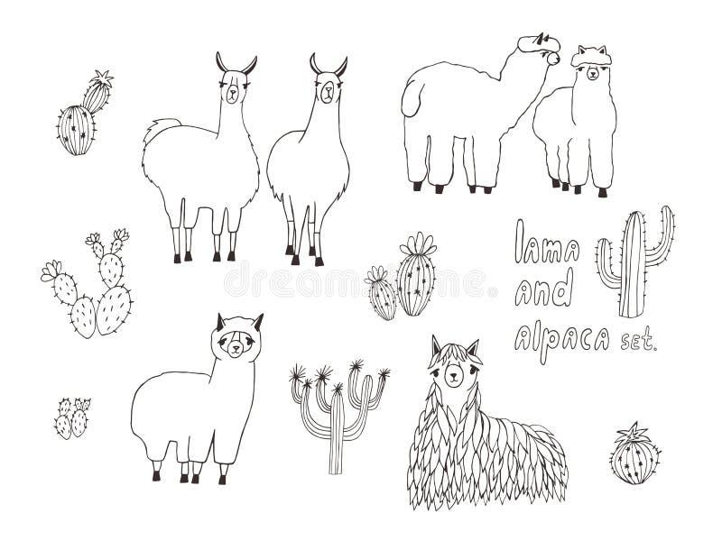 Lama, alpaca linda y cactus fijados Ilustración drenada mano del vector stock de ilustración