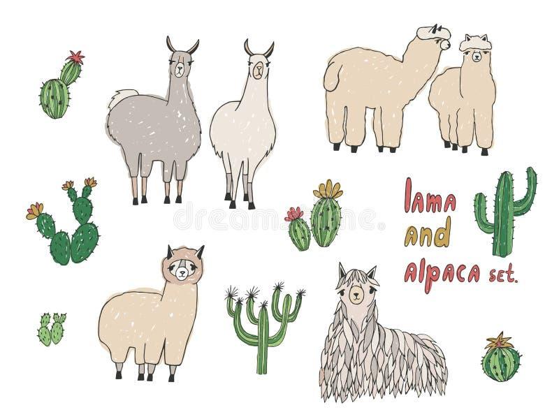 Lama, alpaca linda y cactus fijados Ilustración drenada mano del vector ilustración del vector