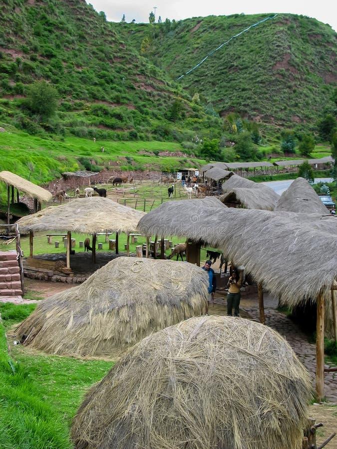 Lama-Bauernhof Awana Kancha in Peru lizenzfreies stockfoto