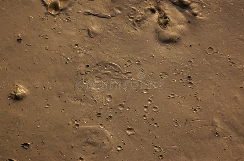 Lama com crateras foto de stock royalty free