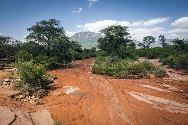 Lama do rio derramado após as inundações no parque nacional de Amboseli fotografia de stock royalty free