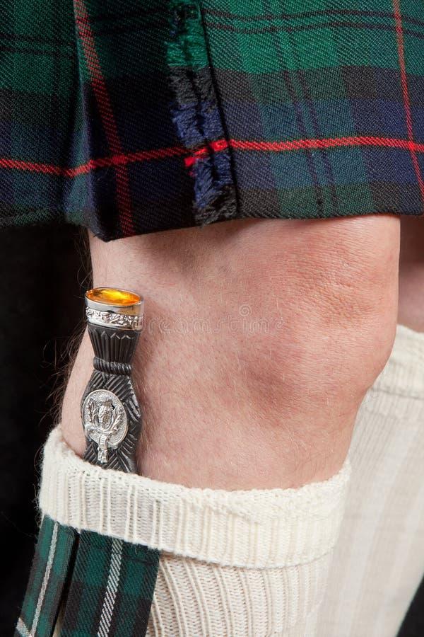 Lama e kilt scozzesi fotografia stock libera da diritti
