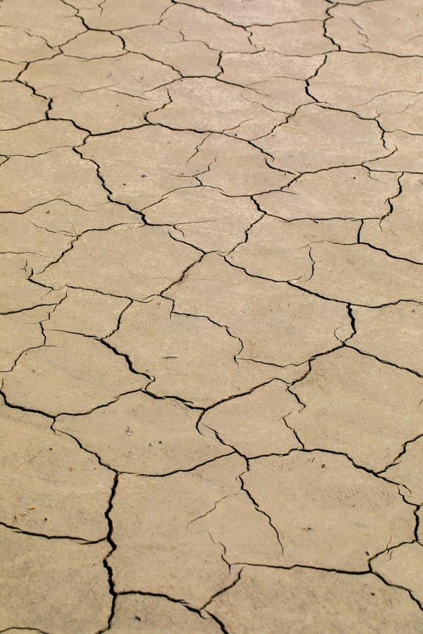 A lama marrom seca rachada cobriu a cama de lago fotos de stock royalty free