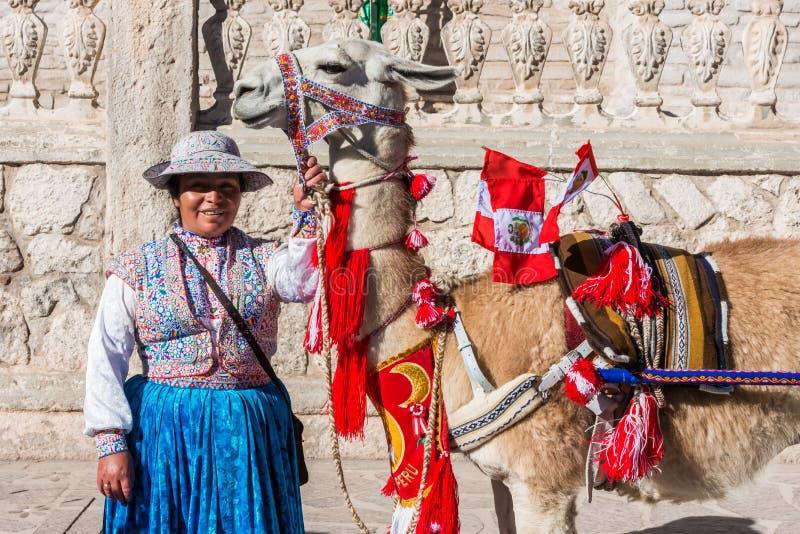 Lama mit peruanischen Flaggen und Frau Arequipa Peru stockfotografie