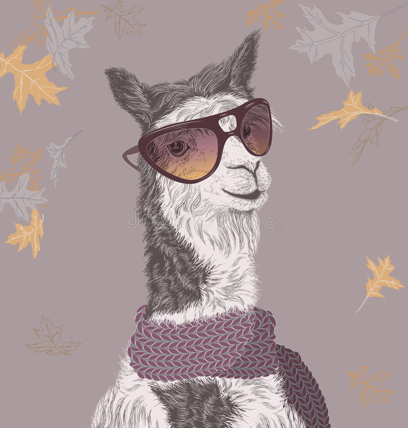 Free Lama On The Autumn Background In Sunglasses And Scarf Stock Photos - 61691423