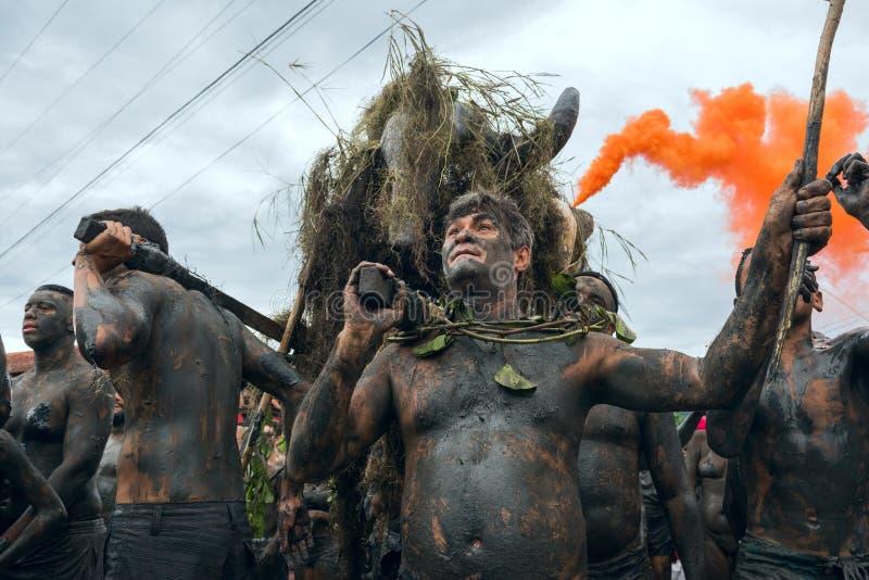 Lama in Paraty, Rio de Janeiro State, carnevale di Bloco da del Brasile immagine stock libera da diritti