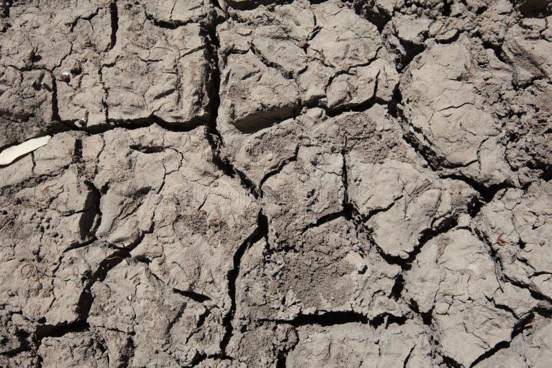 Lama rachada seca que forma o teste padrão imagens de stock
