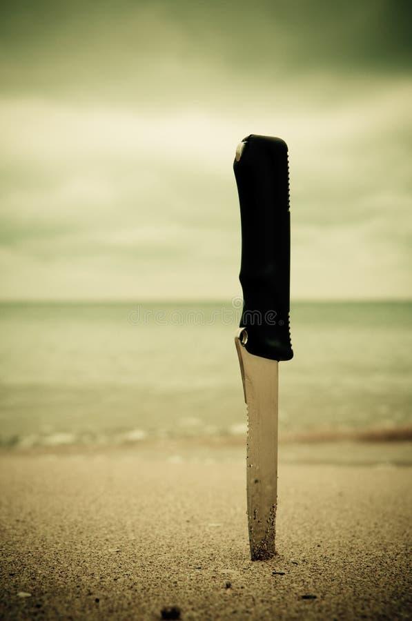 Lama in sabbia fotografie stock