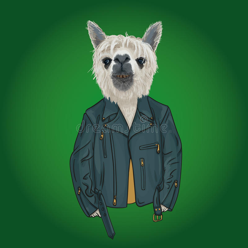 Lama teen wearing hoodie with print, furry art illustration, royalty free stock photography