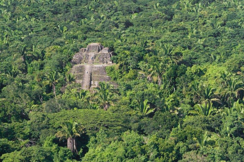Lamanai, ruinas del maya fotos de archivo libres de regalías