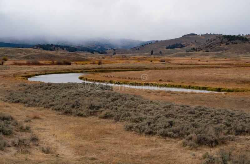Lamar Rzeczna dolina w Yellowstone parku narodowym obraz royalty free