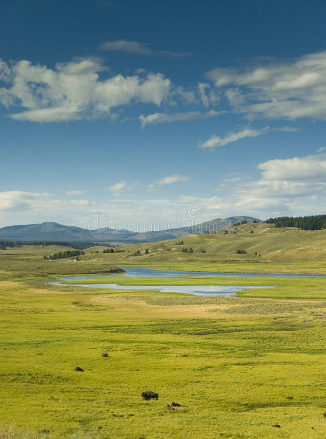 Free Lamar Valley In Yellowstone Stock Image - 6179681