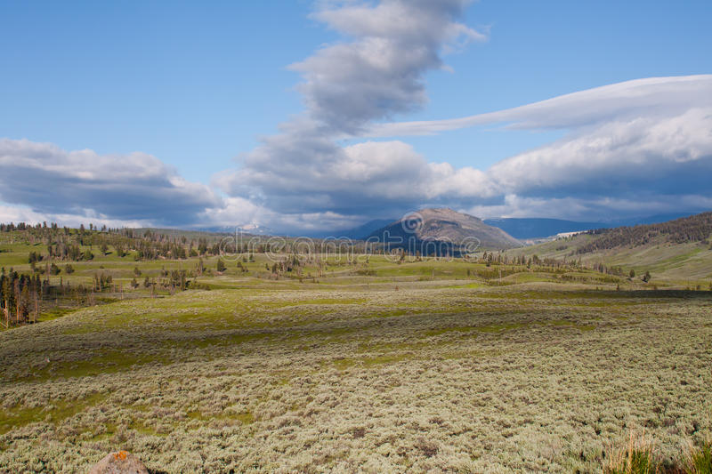 Download Lamar Valley In Yellowstone Stock Photo - Image: 20064784