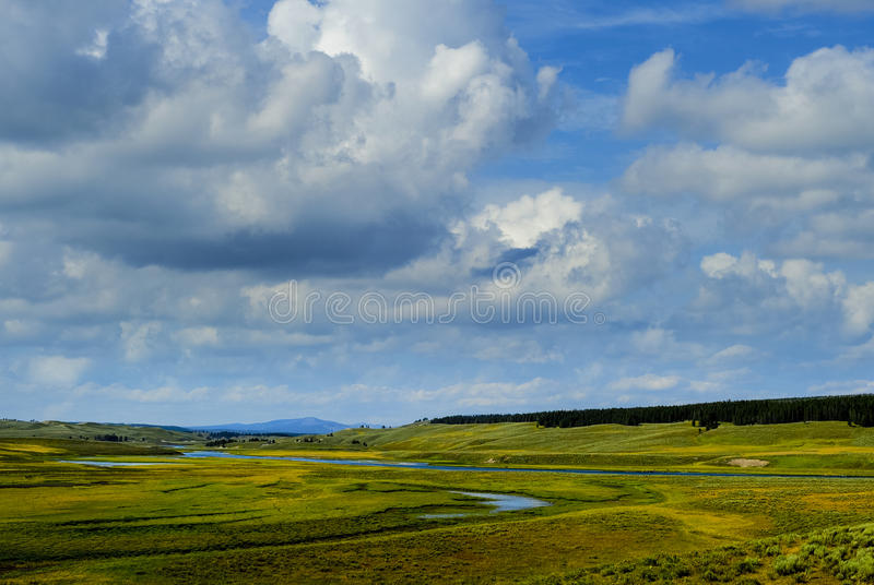 Lamar Valley Yellowstone National Park royalty free stock photography