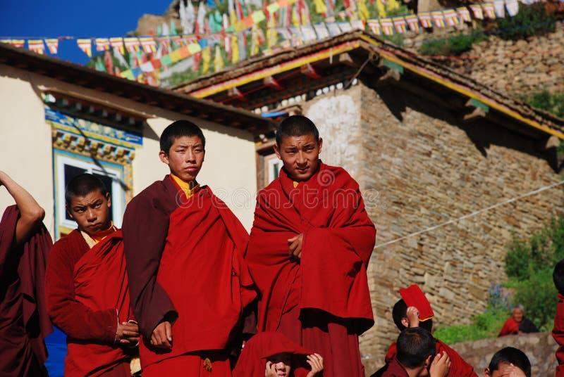lamas группы мальчика тибетские стоковое изображение