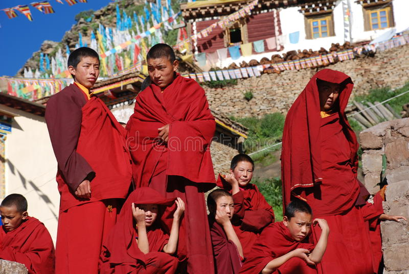 lamas мальчика тибетские стоковые изображения