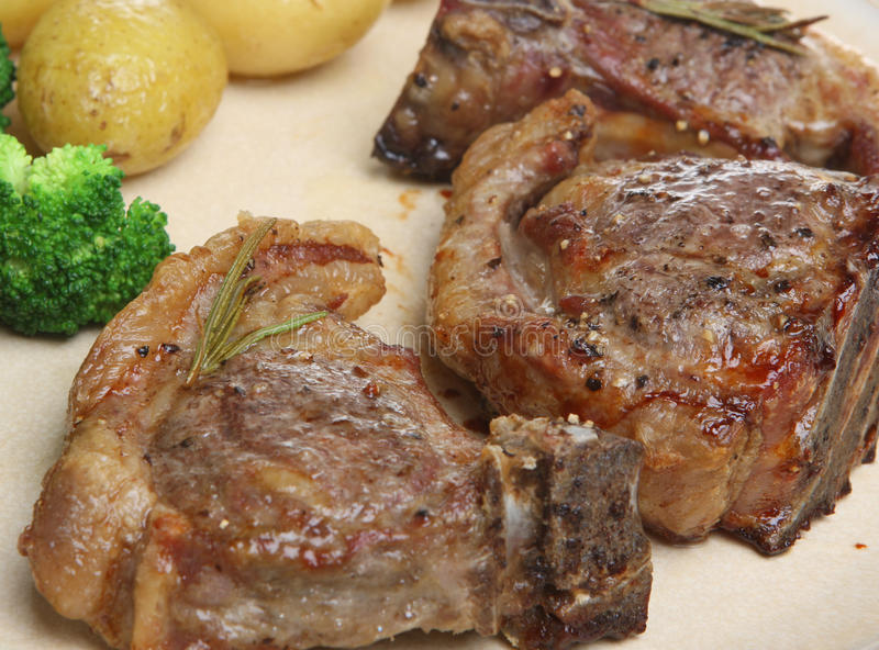 Lamb Chops royalty free stock photo