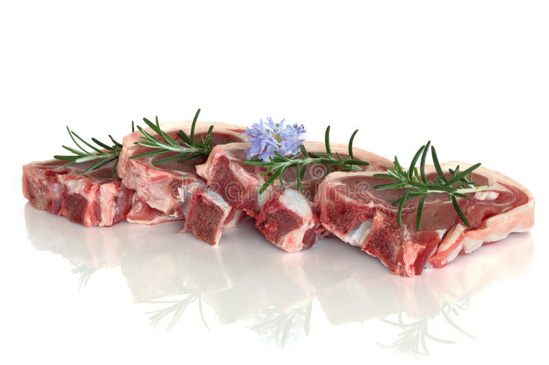 Lamb Chops. Lamb chop raw meat with rosemary herb flower leaf sprig isolated over white background royalty free stock image
