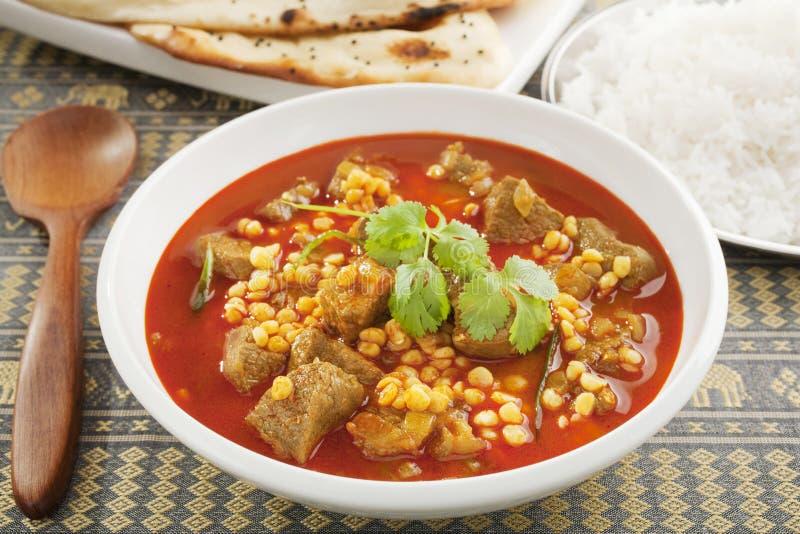 Download Lamb Curry stock photo. Image of cuisine, lentils, coriander - 28884156