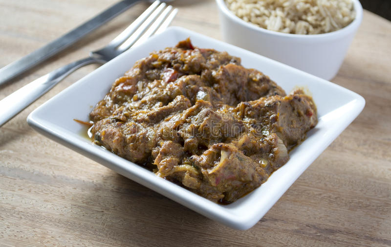 Download Lamb Curry & Rice stock image. Image of indian, south - 21554899